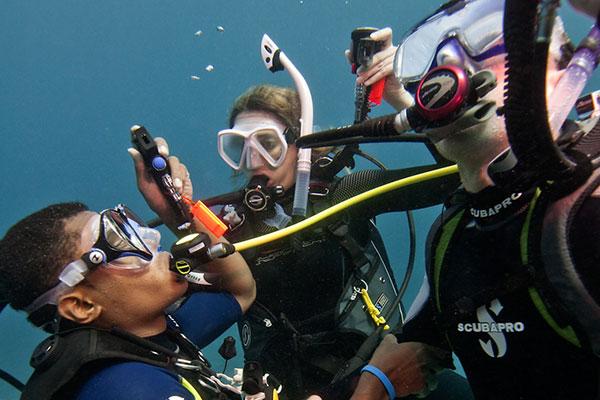 PADI Elearning - Rescue Diver