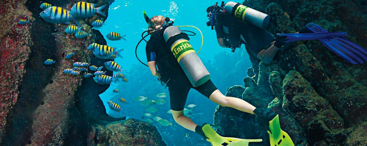 PADI enriched air Diver - ppal