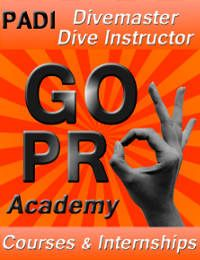 Dressel Divers PADI GO PRO
