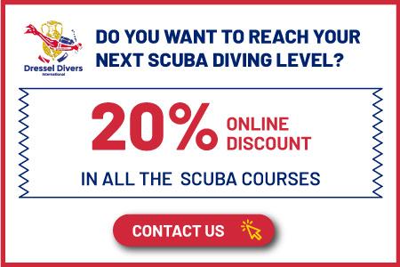 scuba diving certification levels promo
