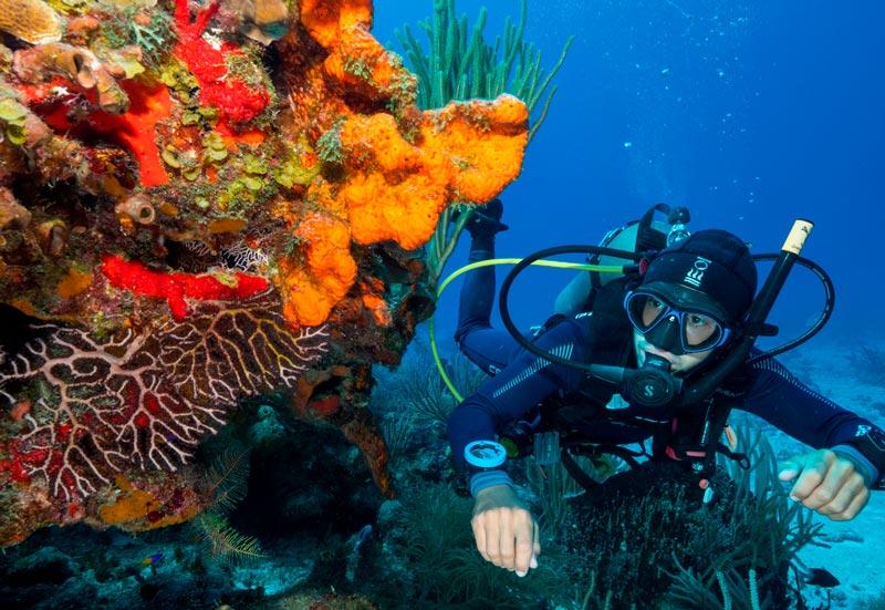 Parque Nacional Arrecifes de Cozumel - buzo