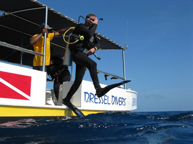 Scuba diving in playa del carmen with dressel divers for The dive shop