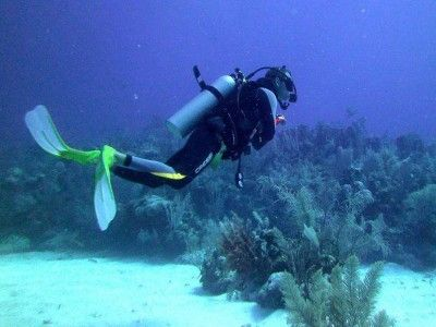 Centro Immersioni Puerto aventuras