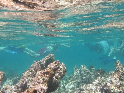 puerto aventuras snorkeling centers