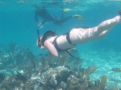 snorkelcentrum puerto aventuras