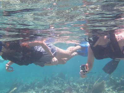 puerto vallarta fare snorkel