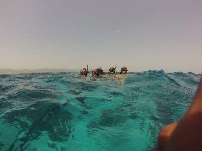snorkeling shops puerto vallarta