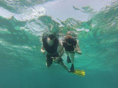 pùerto vallarta snorkeling