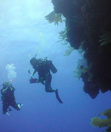 Puerto Plata Scuba Diving