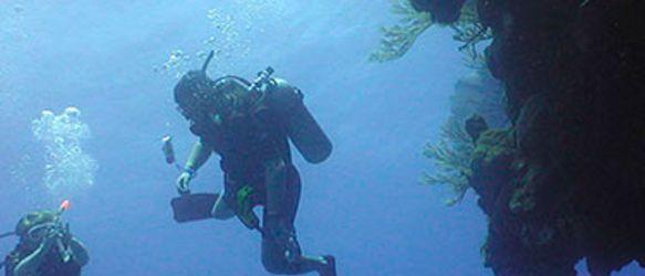 Puerto_Plata_Scuba_Divingrec