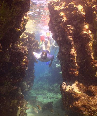 Puerto Plata Snorkeling