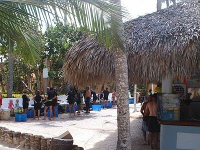 dive centers punta cana
