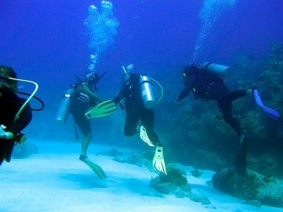 punta cana dive centers