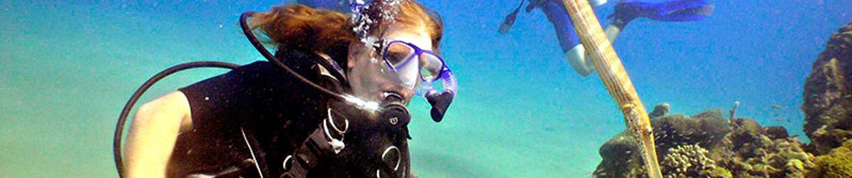 Punta-Cana-Scuba-Diving-Dressel-Divers-rec