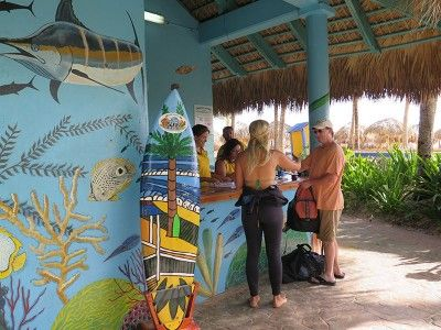 punta cana snorkeling trips