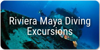 Scuba diving in Mexico - Riviera Maya Excursion
