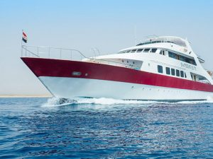 Red Sea Liveaboard Scuba Diving - Emperor Elite 2