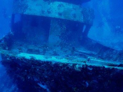 escursioni immersione Riviera maya