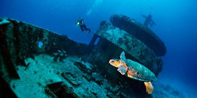 Riviera Maya Diving Excursions