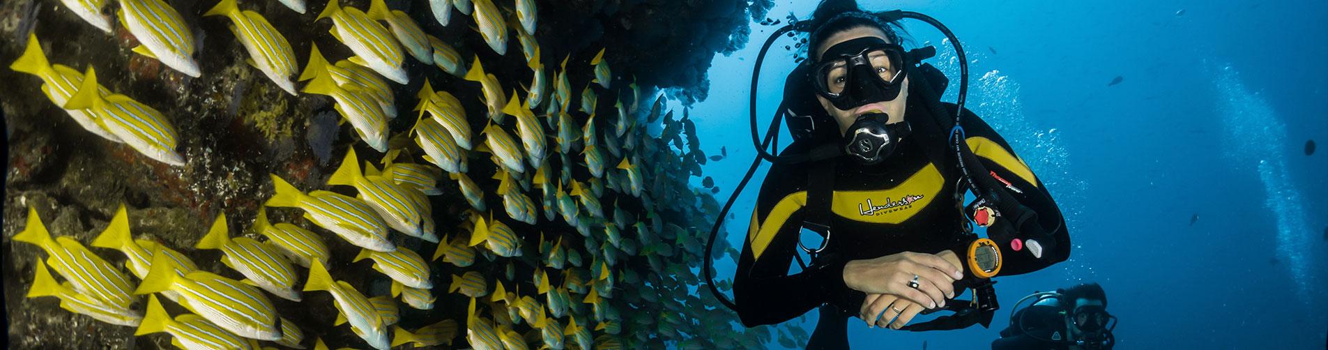 Scuba diving - slide
