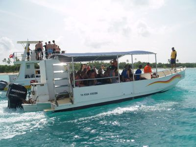 day trip saona island