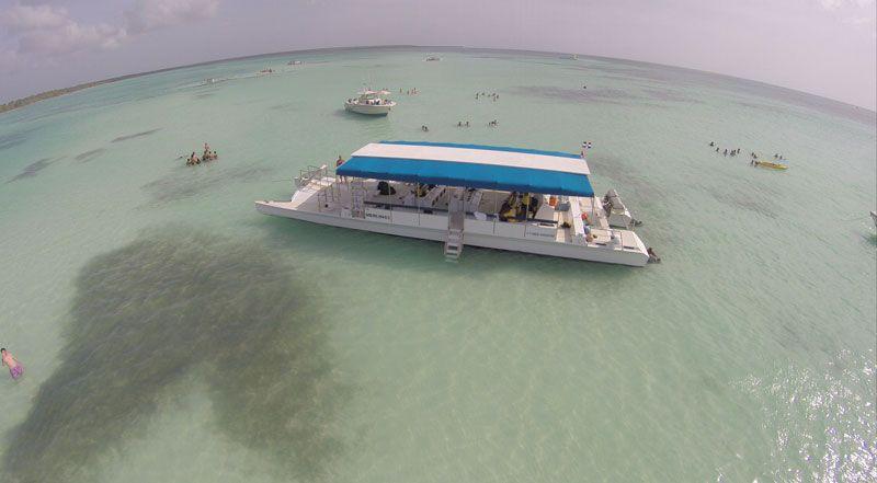 saona island tours