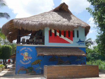 Scuba Diving Cozumel -Konstantin SGF
