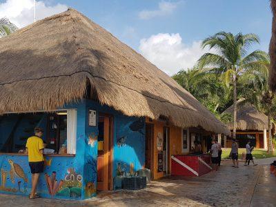 Scuba Diving Playa Del Carmen - JORGE FABRE2