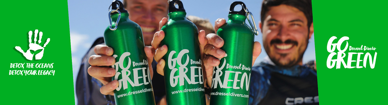 Slide go Green Bottle - Dressel