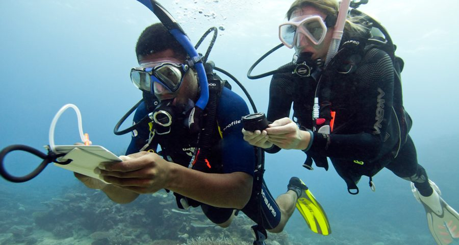 Underwater navigation tips - couple