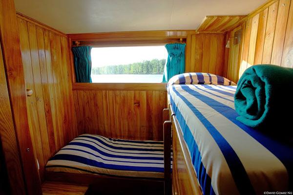 bahamas liveabord diving - standard cabin