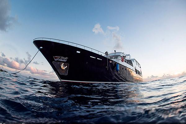bikini atoll livebaoard - Truk Master 2