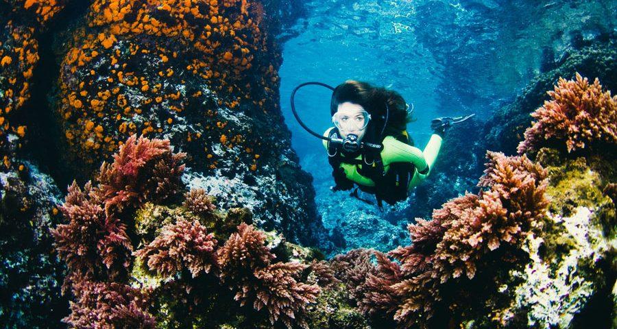 buceo en solitario - foto principal