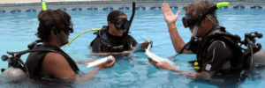 DAILY FREE SCUBA TRY OUT IN THE POOL