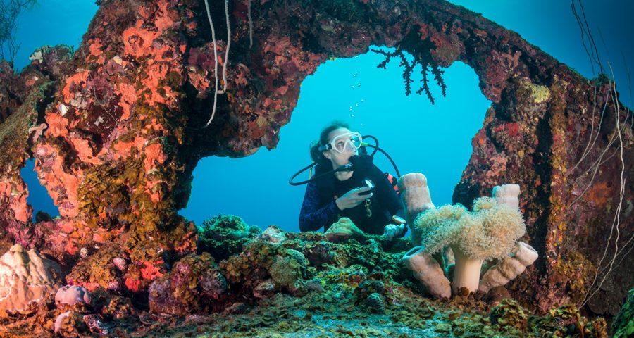 deep water diving - buceo profundo - 4