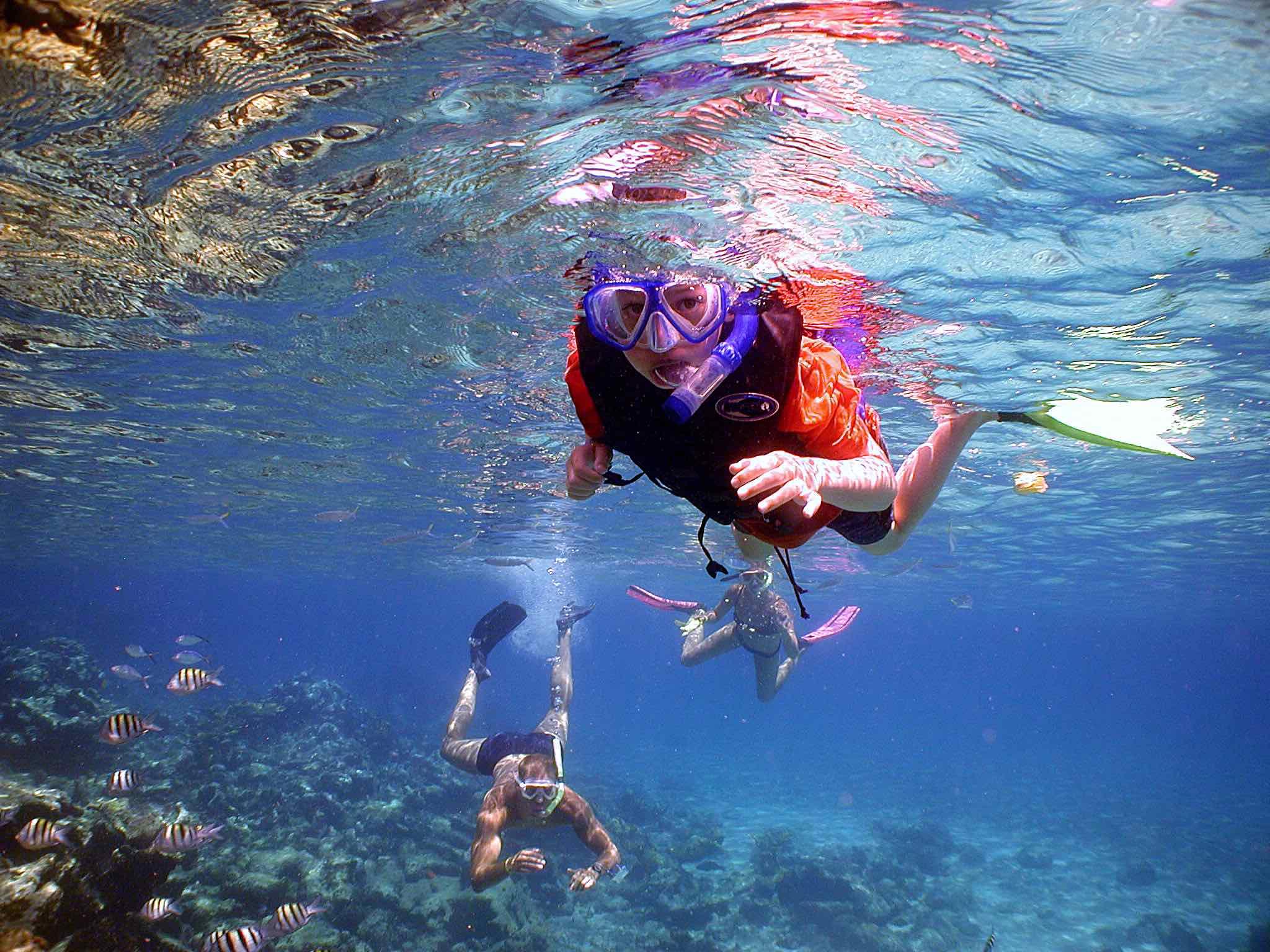 deportes acuáticos - snorkeling