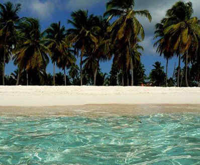 dive-in-dominican-republic