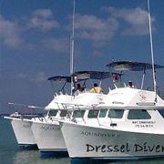 Dressel Divers Boats