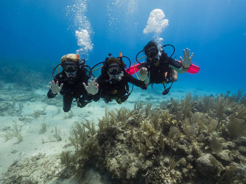 get scuba certified - 2