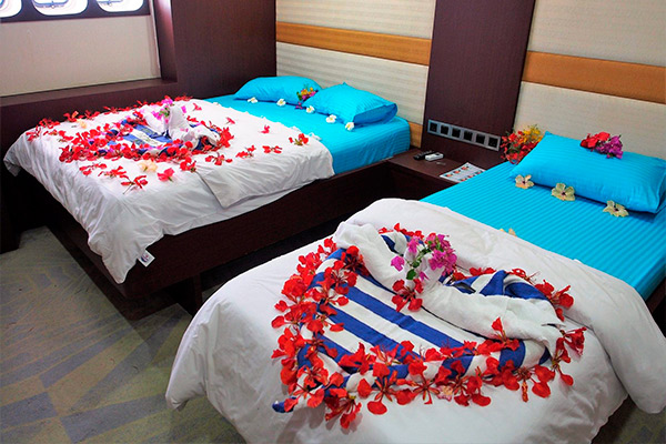 maldives liveaboard diving - LOWER DECK DOUBLE AND 1 SINGLE BED CABIN