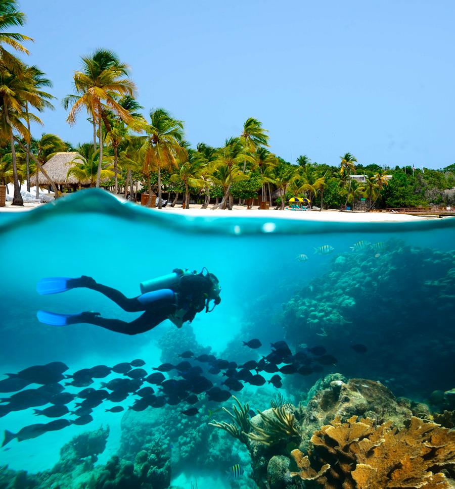 mejores lugares de buceo en el caribe - mexico