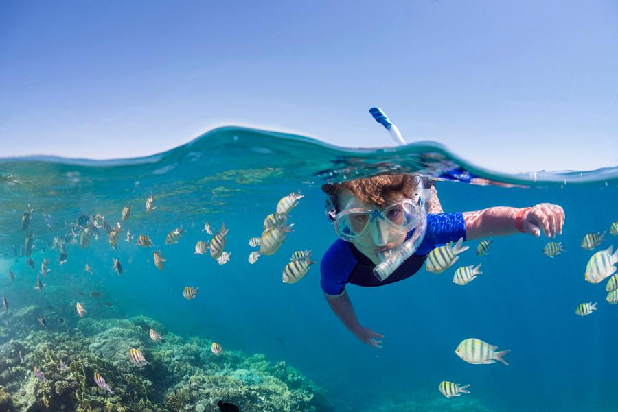 mejores sitios para hacer snorkel - cozumel