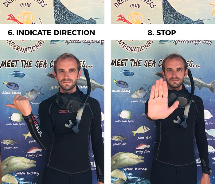 scuba diving hand signals 6 and 8