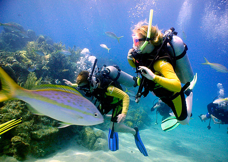 scuba diving rules - 3