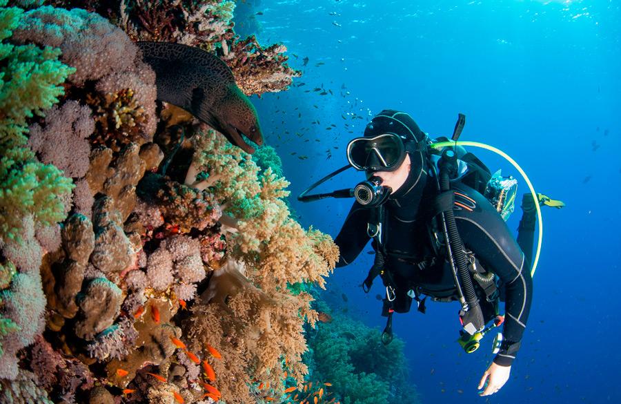 scuba diving rules