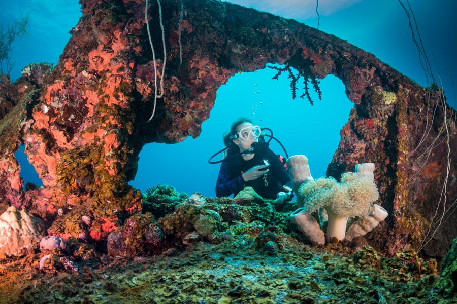 wreck diver - 2